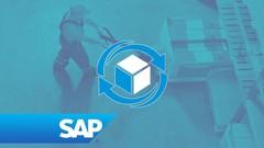 Imágen de SAP WM Gestión de Almacenes