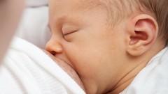 Netcurso-lactancia-materna-la-guia-completa