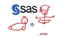 The Simplest Guide™ to SAS Programming*SAS Base*SAS Advanced - Udemy Coupon