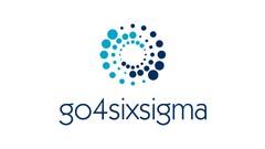 Lean Six Sigma Yellow, Green & Black Belt I go4sixsigma - Udemy Coupon