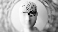 Netcurso-principios-de-la-programacion-neurolinguistica-y-el-coaching