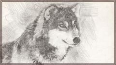 Imágen de Cómo dibujar Animales - Dibujo artístico
