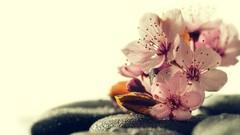 Curso Aprende Reiki, el Sistema de Sanación Natural más sencillo.