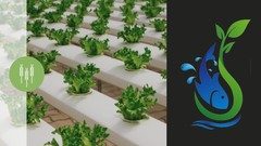 Aquaponics Farming & Gardening + Design Case Study - Udemy Coupon