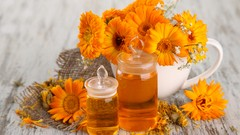 Herbalism :: Professional Herbalist Certificate - Udemy Coupon