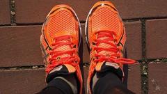 Netcurso - running-loisir-objectif-de-course-10-km-route-ou-trail