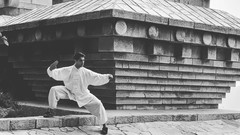Netcurso-tai-chi-chuan-iniciatico