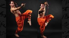 Netcurso-qi-xing-quan-el-puno-de-las-7-estrellas-kung-fu-shaolin