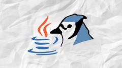 Netcurso-programacion