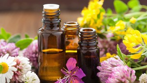 Free udemy coupon Essential Oils 101