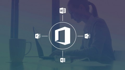 The Ultimate Microsoft Office 2013 Training Bundle 71 Hours