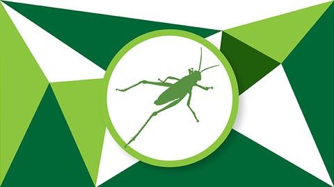 The Grasshopper Bible: Fundamentals