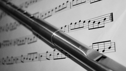 Netcurso-tin-whistle-basico