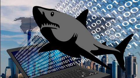 Netcurso-hacking-und-netzwerkanalyse-mit-wireshark-der-komplettkurs
