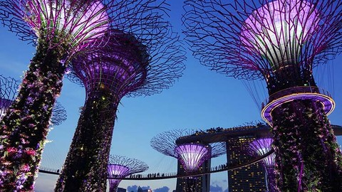 The Stunning Gardens by the Bay, Singapore