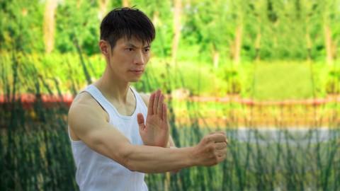 Learn Wing Chun Sil Lim Tao At Home FREE! With David Wong