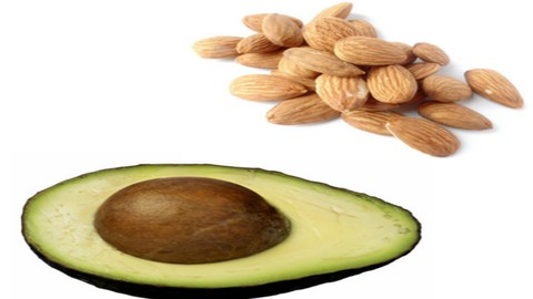 Nutrition Mastery: All You Need To Know About Fats