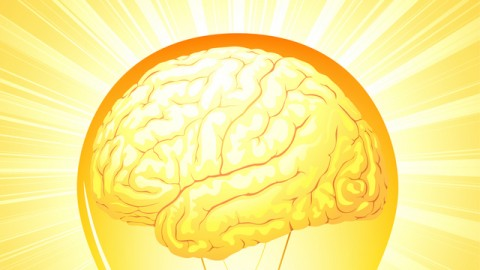 Netcurso-the-neuroscience-of-reframing-and-how-to-do-it