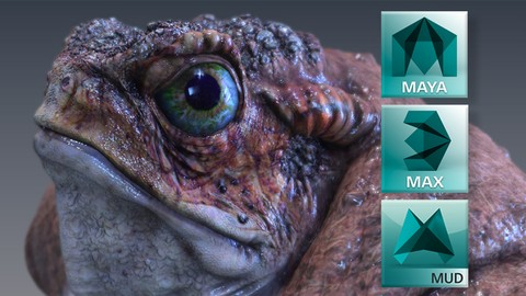 3D Animation & Modeling Master Class