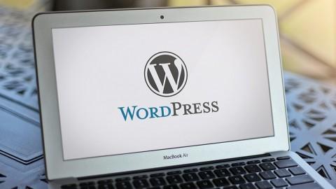 Netcurso-how-to-put-a-wordpress-website-live
