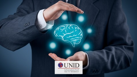 Netcurso-recursos-digitales-para-desarrollar-inteligencias-multiples