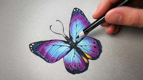 The Colored Pencil Drawing Course - Beginner to Advanced