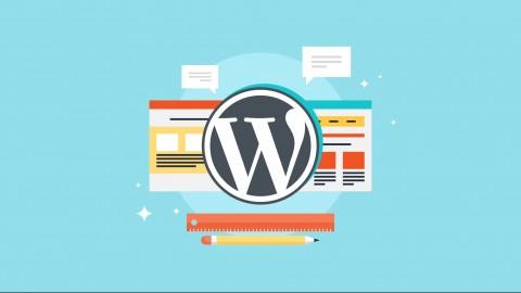 Netcurso-aprende-y-domina-wordpress-facil-y-rapido