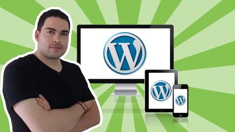 Netcurso-como-crear-una-pagina-web-profesional-con-wordpress