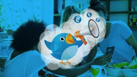 Netcurso-como-conseguir-20000-followers-de-alta-calidad-en-twitter