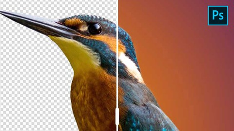 Netcurso-photoshop-basics-meistere-die-ebenen-und-werkzeugpalette