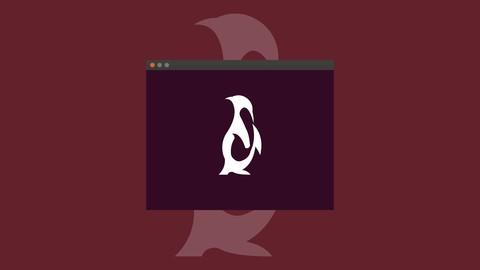 Netcurso-linux-basics-for-beginners