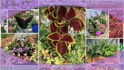 Floral Design: Flower Arrangements for Container Gardens