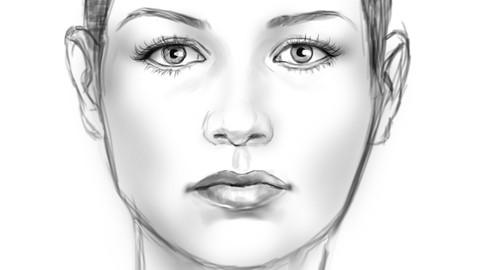 Netcurso-foundation-for-digitally-sketching-a-face