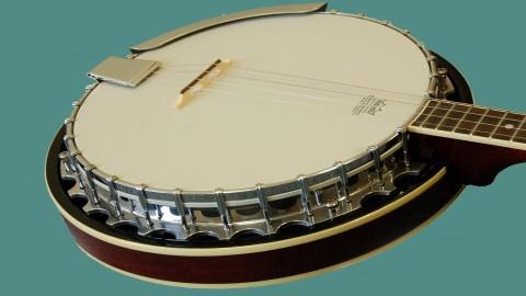 Tenor Banjo for Absolute Beginners