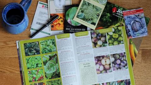 Smart Garden Planning for Spring