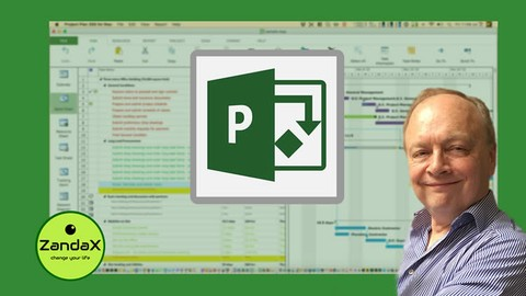 Microsoft Project Advanced: Top Level Project Management