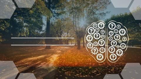Netcurso-desenvolvendo-inteligencia-emocional
