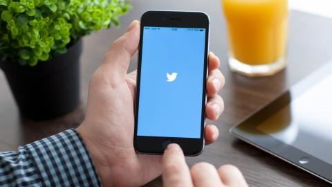 Netcurso-twitter-hordes
