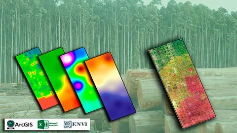 Curso de  Plantaciones Forestales con ArcGIS