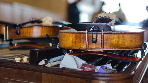 VIOLIN: how to choose one, gear it up, care and maintenance