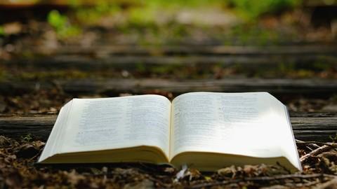 Netcurso-bible-a-day-2kings