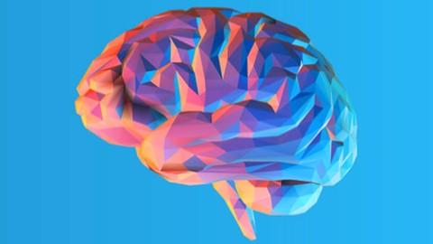 Netcurso-the-rational-emotive-behaviour-therapy-course