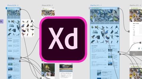 【2020年最新版】Adobe XD 手を動かして覚えるUI/UXプロトタイピング。初級から高度テクニックまで全てを学ぶ