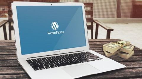 WordPress Marketing: Plugins For Growing Online Business