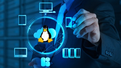 Netcurso-linux-alternatives-for-windows-applications