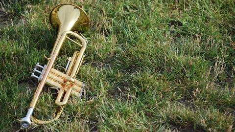 Netcurso-//netcurso.net/ja/ok-trumpet
