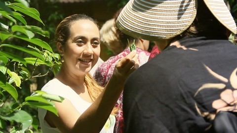 Balinese ancient knowledge about Beauty from Plants and Herb