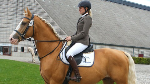 Buying Your First Horse Masterclass: Horsemanship for Buyers