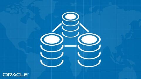 Listo para usar Oracle FlashBack