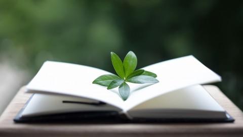 Netcurso-reading-essentials